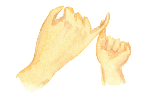 image illust